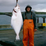 Halibut Fishing Cold Bay